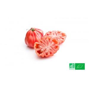 Tomate rouge Coeur de Boeuf cultivée par nos partenaires Maraichers bio en Alsace et Lorraine