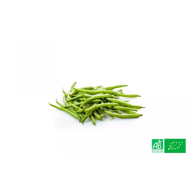 Haricot vert frais biologiques poussant dans les champs de notre ferme écologique VEGETAL RESPEKT