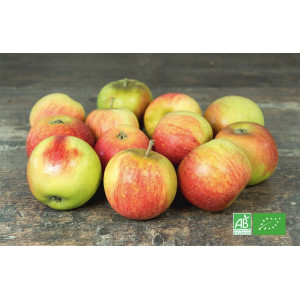 Pomme bio en direct des vergers d'Alsace, partenaire de MA-FERME-BIO.com