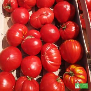 Tomate bio ancienne Noire de Crimée cultivée et récoltée dans les champs de nos partenaires Maraichers bio en Alsace Lorraine