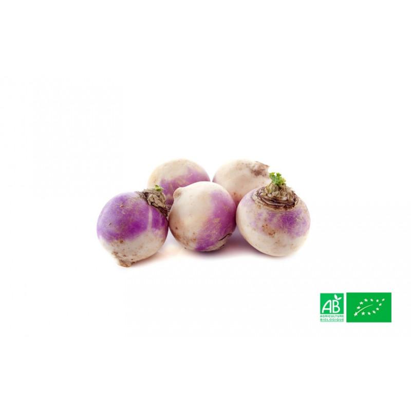 250g de Navets bio nouveaux violets cultivés dans nos champs en Alsace Lorraine