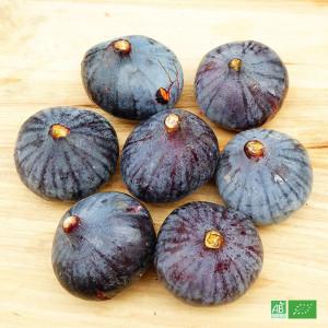 Figues bio fraîches de Solliès, une AOC française de Provence