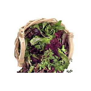 Salade mesclun Alsace Lorraine