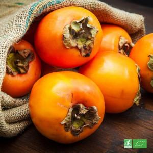 Kaki bio cultivé par nos partenaires Producteurs bio en Europe du Sud
