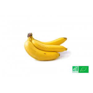 1kg de Bananes Bio labelisées bio AB cultivées selon les principes strictes de l'agriculture biodynamique