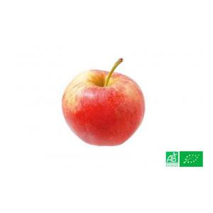 Pomme royale Gala du Chili 1kg cultivées selon les normes bio AB pour notre maraicher bio VEGETAL RESPEKT en Alsace Moselle
