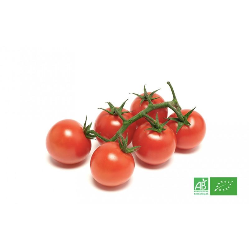 Tomate cerise bio en grappe & variétés de tomates bio du jardin, maraicher bio en Alsace Moselle