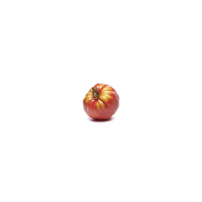 Tomate Bio Fleurette Coeur De Boeuf Et Legumes Bio En Alsace Lorraine