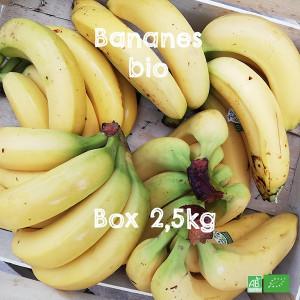 Box de Bananes bio en circuit court Producteurs et Commerce Equitable, livrable par notre équipe chaque semaine à domicile