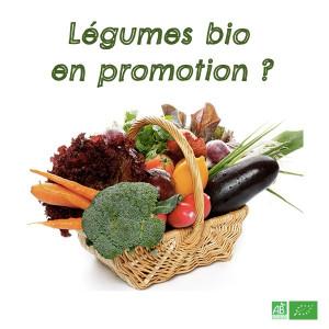 Légumes bio en promotion, avec une maturité avancée. Il s'agit aussi d'invendus sur nos stands marché