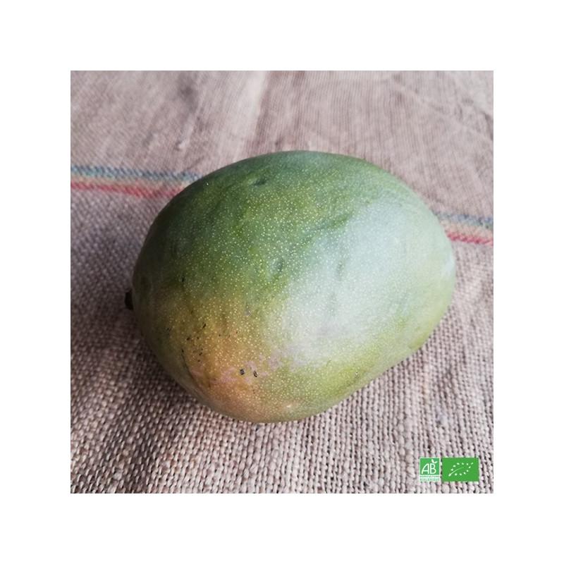 Mangue Atkins bio cultivées en zone tropicale par des exploitants agricoles bio, partenaire de Ma Ferme Bio