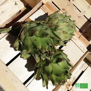Lot de 3 Artichauts blancs bio / en Circuit Court Producteurs bio d'Alsace et de France