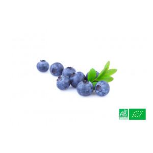 Myrtille bleuet des Vosges cultivée aux normes bio dans les champs de la ferme écologique VEGETAL RESPEKT