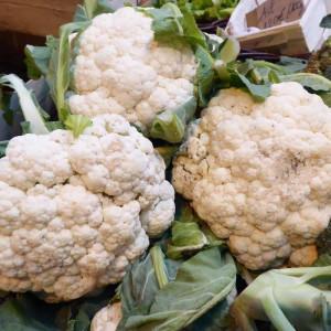 Chou Fleur blanc bio du label BIOBREIZH cultivé par nos partenaires Producteurs Maraîchers certifiés Bio en Bretagne
