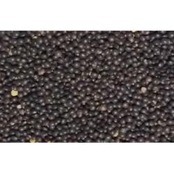 Lentillons bio Beluga, livraison à domicile ou points relais par VEGETAL RESPEKT, votre fermier bio en Alsace et Lorraine