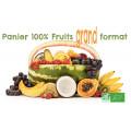 Panier Fruits Bio grand format n°1