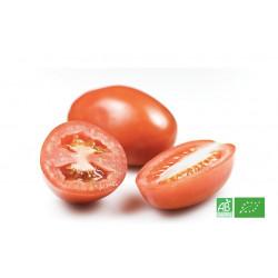 Tomate Roma bio du maraicher, livraison gratuite sur points relais en Alsace et Moselle