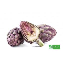 Artichaut bio violet fermier & fruits légumes bio frais du maraicher en Alsace Lorraine