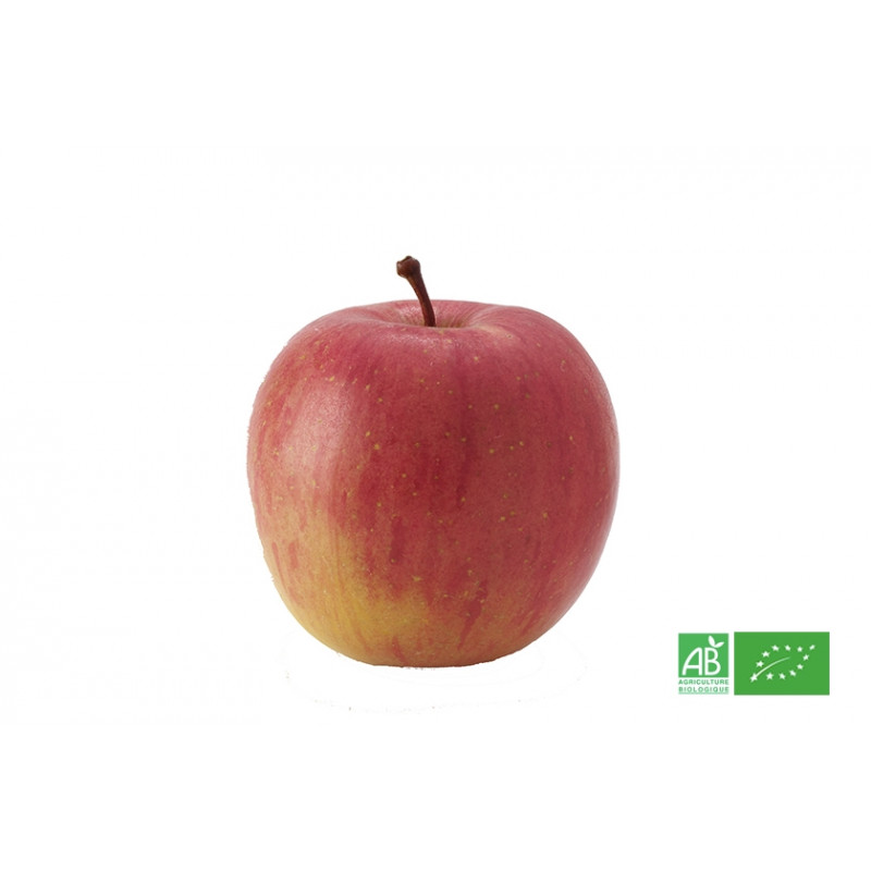 Pomme rouge Fuji du Chili cultivée selon les préceptes de l'Agriculture biologique et du label ECOCERT