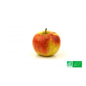 Pomme Elstar cultivée aux normes bio AB pour le compte de notre ferme écologique VEGETAL RESPEKT
