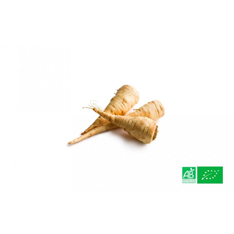 Panais cultivé aux normes bio AB dans les champs de notre ferme écologique VEGETAL RESPEKT