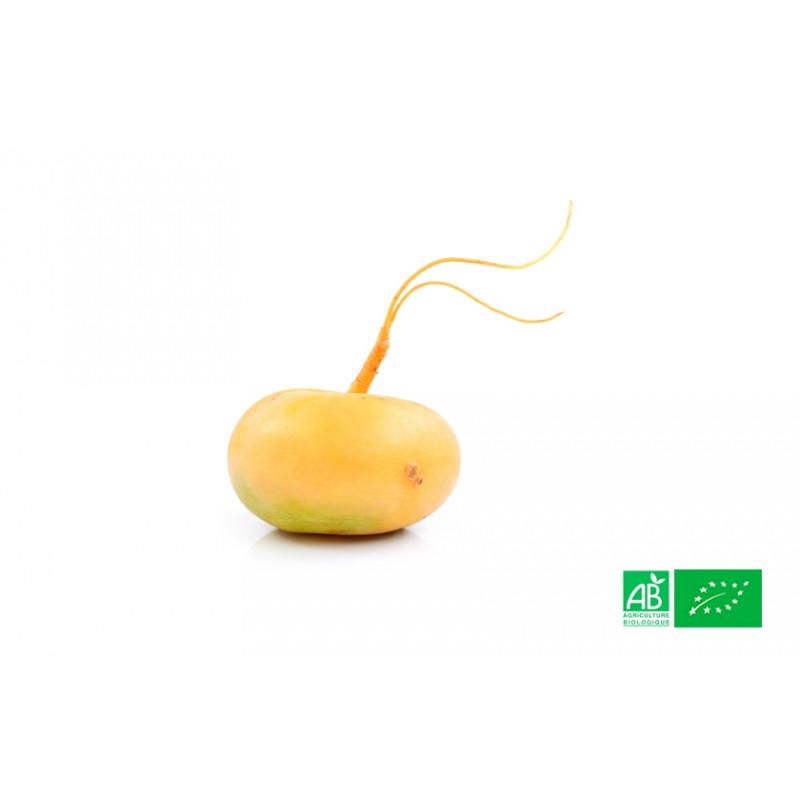 Navet jaune bio 1kg de la ferme bio VEGETAL RESPEKT en Alsace Lorraine