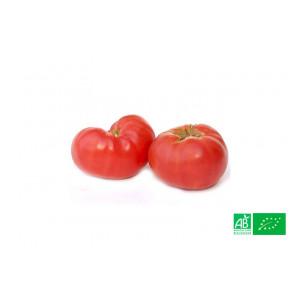 Tomate ancienne Rose de Berne Alsace Lorraine