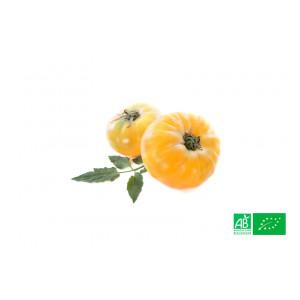 Tomate ananas bio Alsace Lorraine