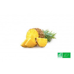 Ananas bio cultivé en zone tropicale par des exploitants agricoles bio, partenaire de notre Ferme Bio VEGETAL RESPEKT