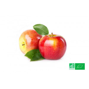 Pomme Natyra 1kg cultivée selon les normes bio AB