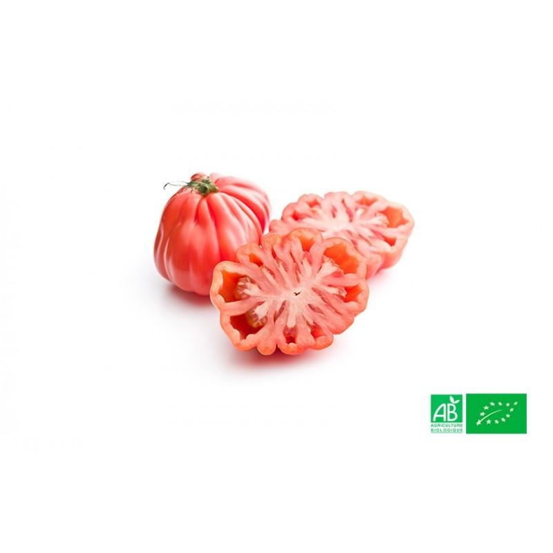 Tomate rouge Coeur de Boeuf cultivée sous serres à la ferme bio VEGETAL RESPEKT en Alsace Moselle