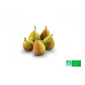 Poire Guyot de Provence bio cultivée pour notre ferme bio VEGETAL RESPEKT en Alsace Moselle