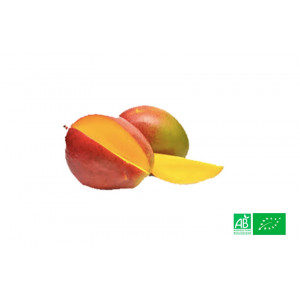 Mangue Kent bio cultivées en zone tropicale par des exploitants agricoles bio, partenaire de notre Ferme Bio VEGETAL RESPEKT