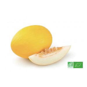 Melon Canari bio issu de producteurs bio en France et Europe du Sud