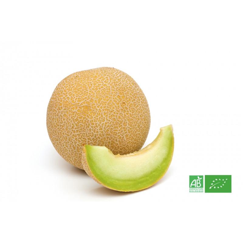 Melon Galia issu de producteurs bio en France et Europe du Sud