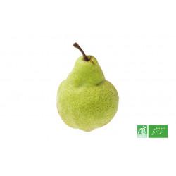 Poire Packham bio issu de producteurs exploitants certifiés bio ECOCERT en France et Europe du Sud