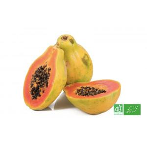 Papaye bio du Ghana et Fruits exotiques disponibles au magasin bio en ligne en Alsace Moselle