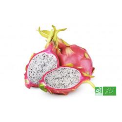 Fruit du dragon bio cultivé en zone tropicale par des exploitants agricoles bio, partenaire de notre Ferme Bio en Alsace Moselle