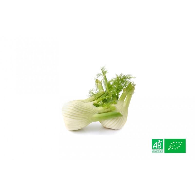 Fenouil cultivé aux normes bio AB dans les champs de notre ferme écologique VEGETAL RESPEKT