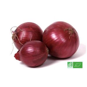 Oignon rouge bio cultivé par le producteur maraicher bio MA-FERME-BIO.com en Alsace Lorraine