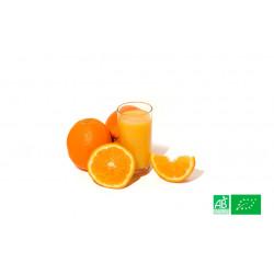 500gr d'oranges bio à jus cultivées aux normes bio AB pour notre maraicher bio VEGETAL RESPEKT en Alsace Lorraine