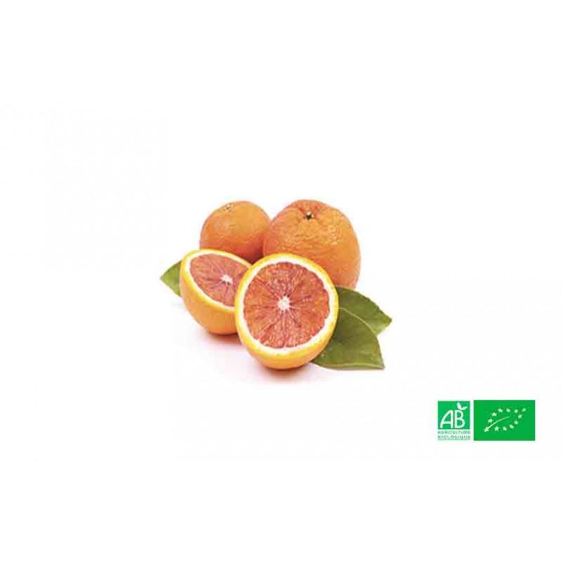Orange semi sanguine bio cultivées selon les normes AB par les agriculteurs bio partenaires de VEGETAL RESPEKT