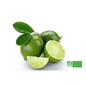 Citron vert biologique cultivé selon les normes strictes d'agriculture bio ECOCERT, agrumes bio en Alsace Lorraine