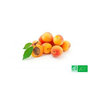 Abricot du Roussillon bio cultivé aux normes bio AB pour le compte de notre ferme écologique VEGETAL RESPEKT