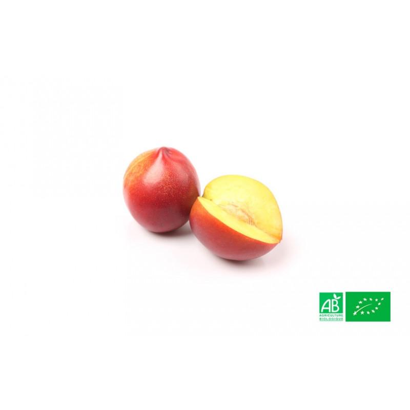 Nectarine jaune du Roussillon aux normes bio AB pour le compte de notre ferme écologique VEGETAL RESPEKT